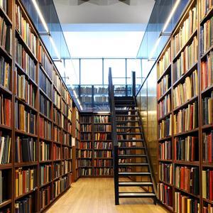 Библиотеки Рогнедино